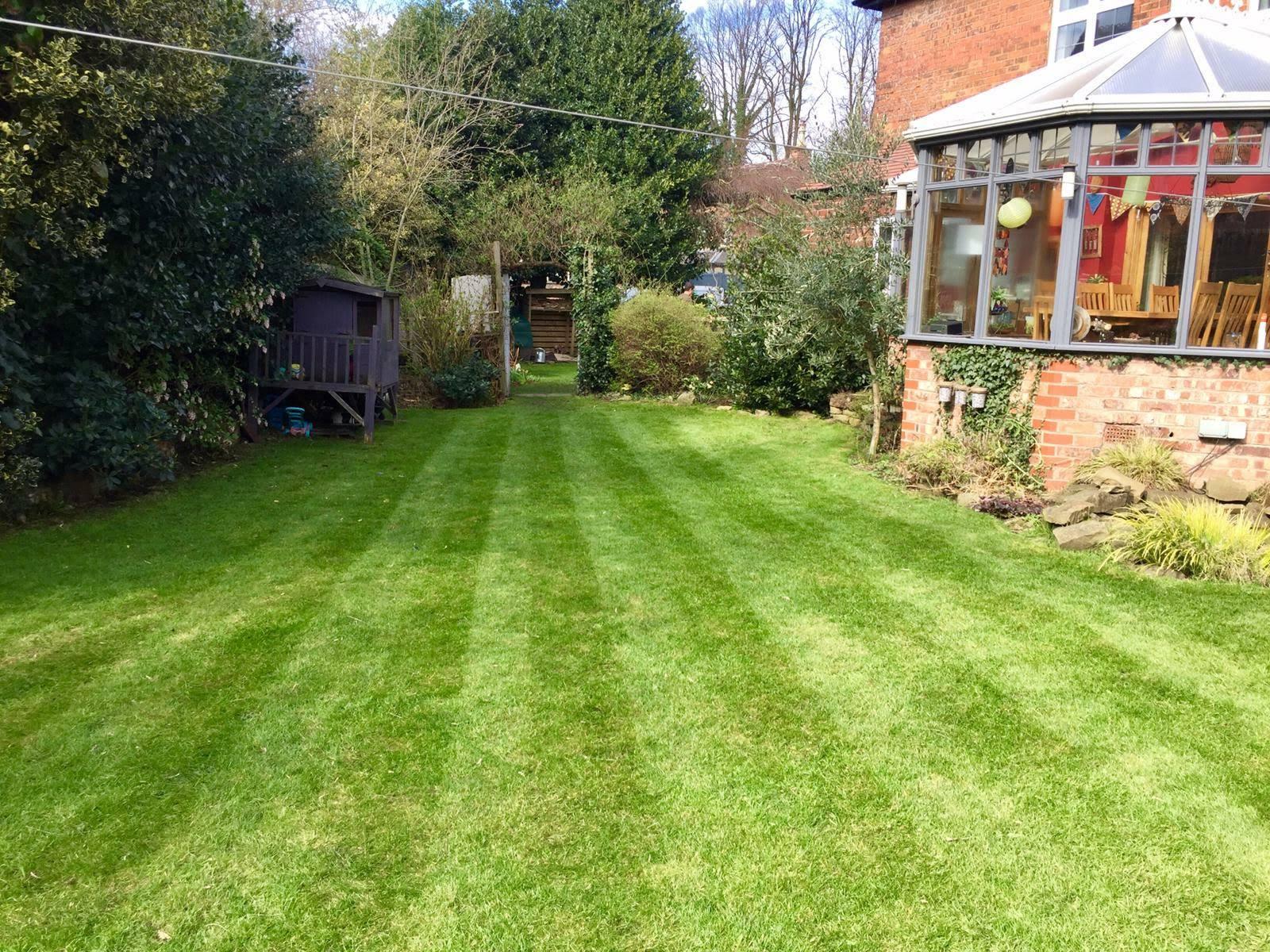 hale lawn services