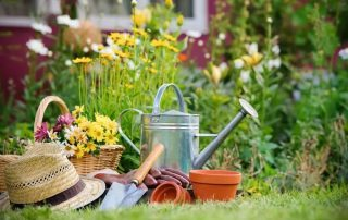 Garden services in manchester and didsbury